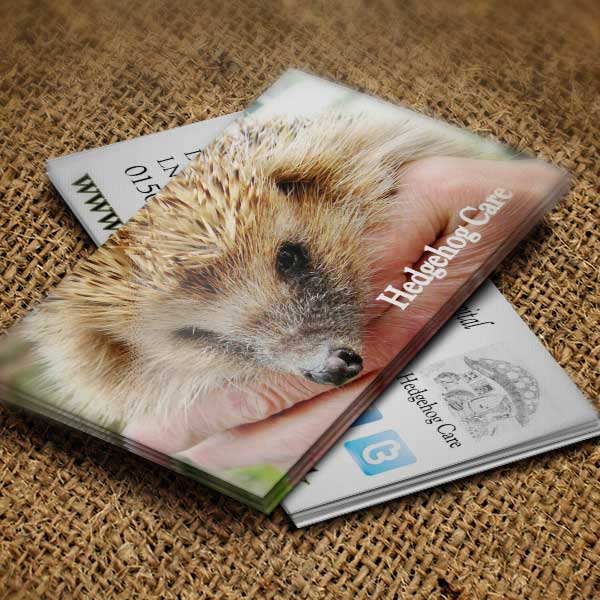 hedgehog-care-business-cards