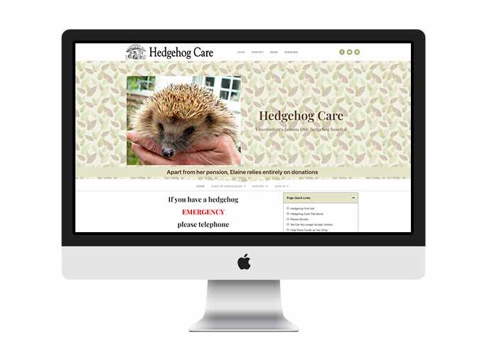 Web Design UK Portfolio Hedgehog Care