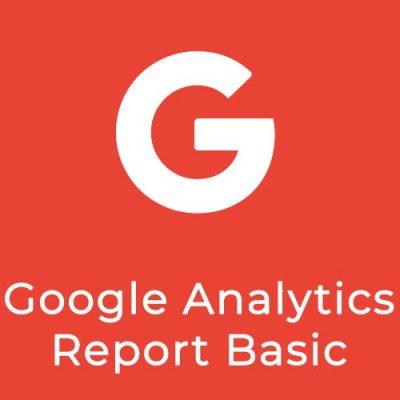 google-analytics-report-basic